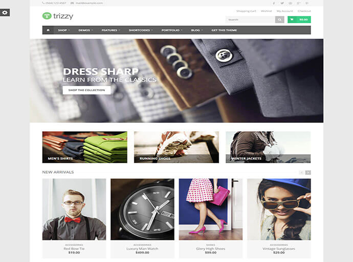 Trizzy Store WordPress