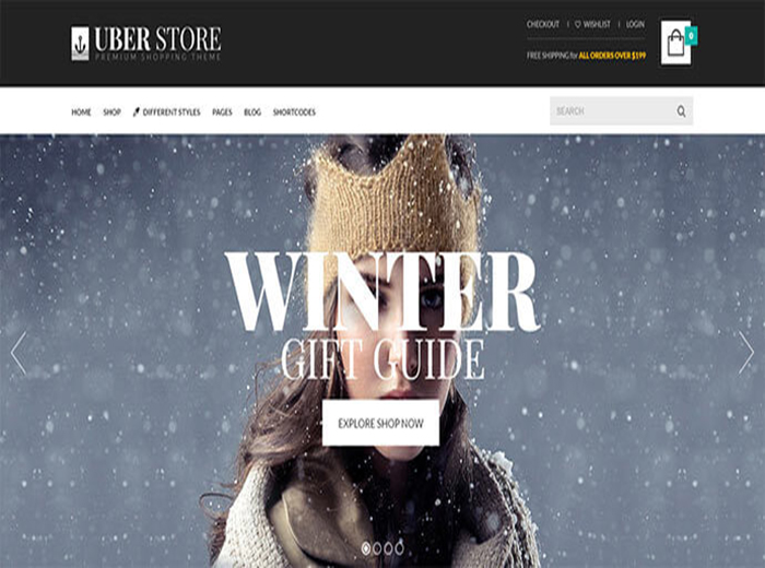 Winter Store WordPress