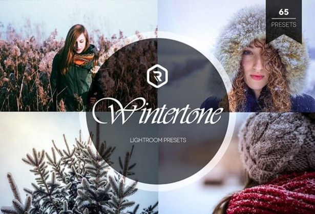 Wintertone Best Lightroom Preset