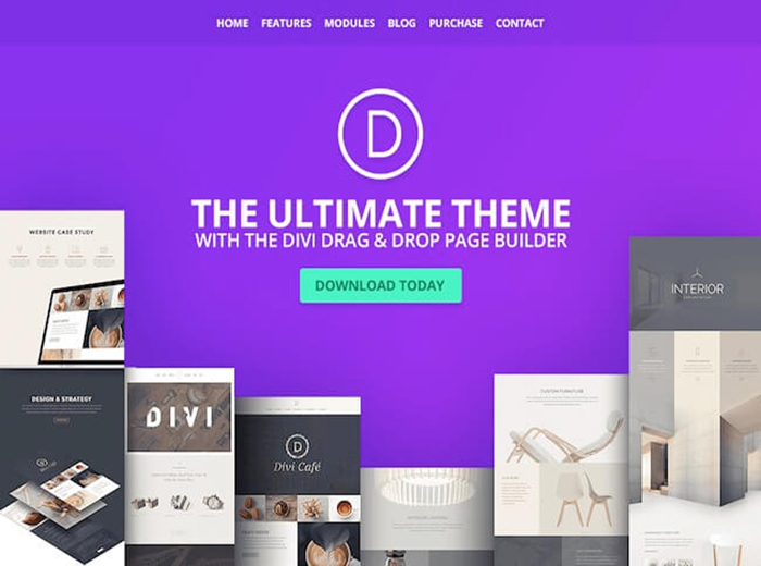 divi popular Store WordPress Theme