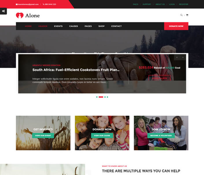 Alone Charity Best Responsive