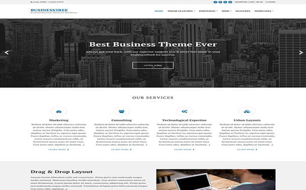BUSINESS3REE Business WordPress