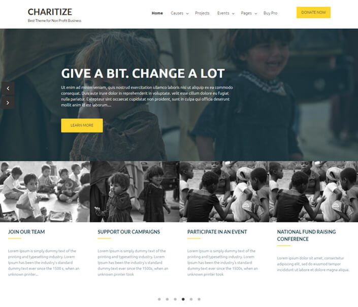 Chartize Best Responsive