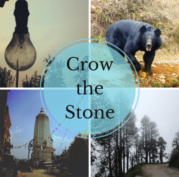 Crow The stone Stock Photo