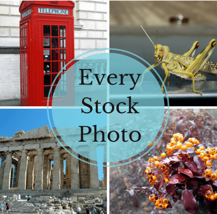 Every Stock Photo Best Free
