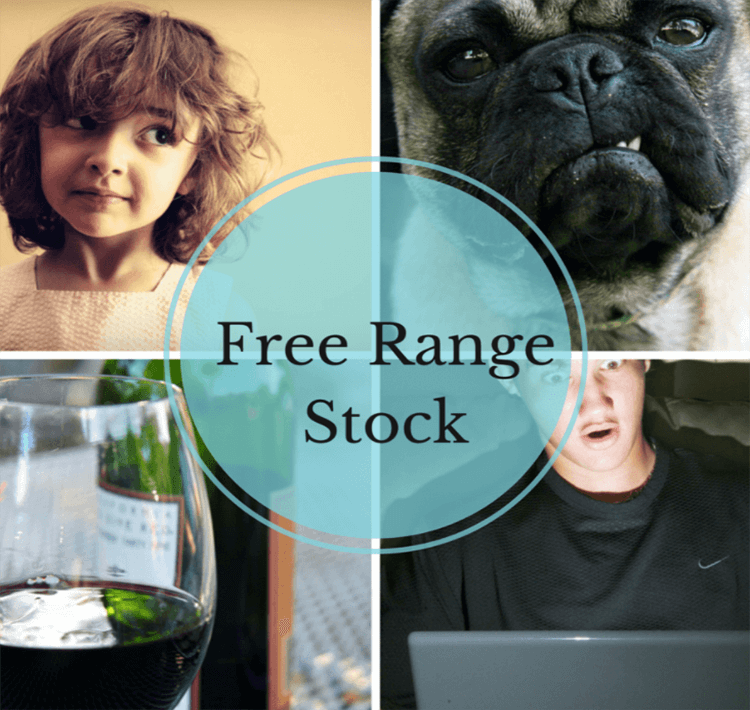 Free Range Stock Best Free