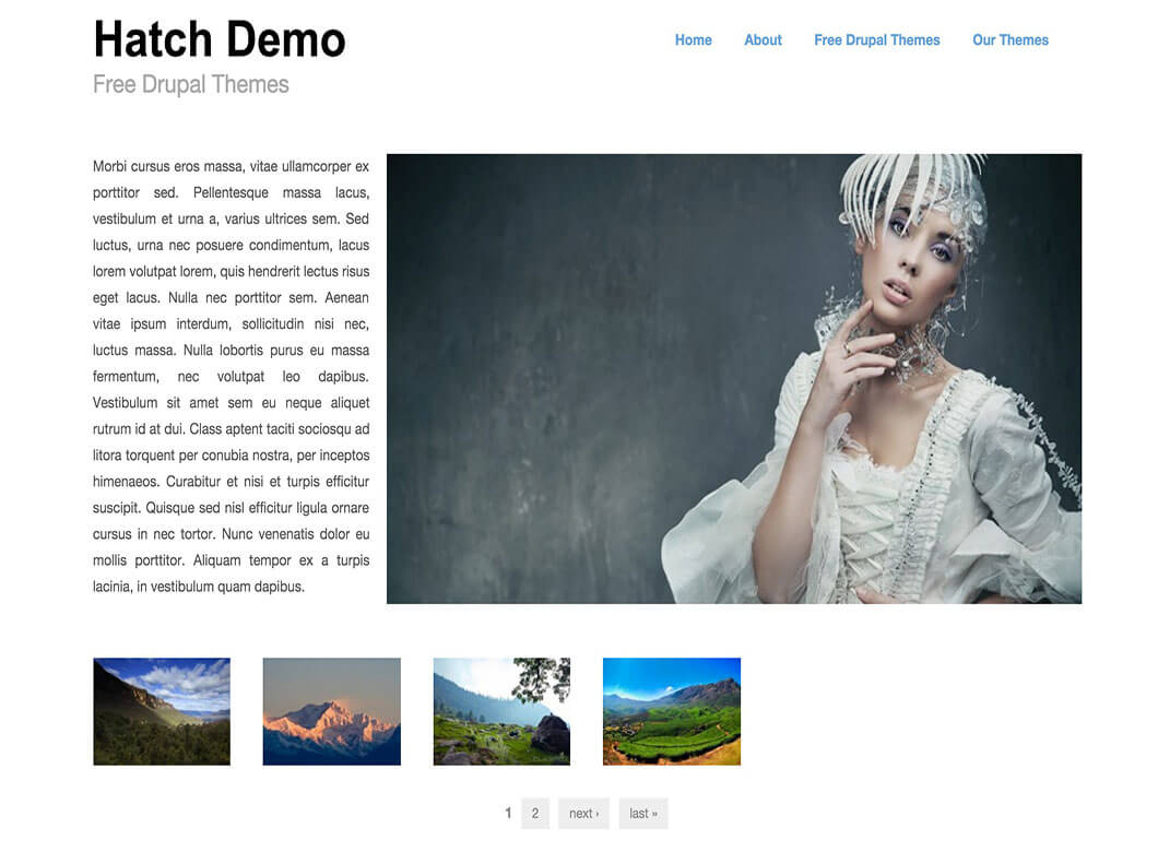 Hatch Drupal Template