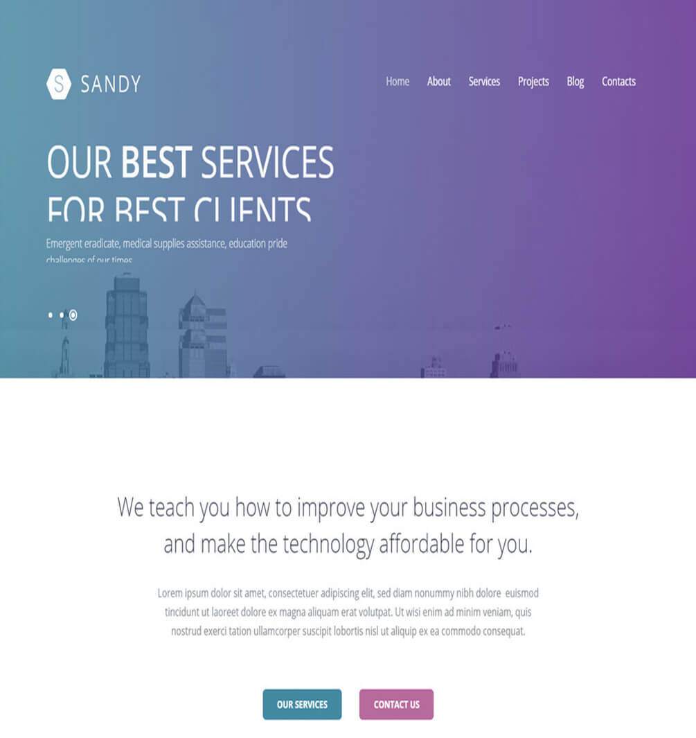 Sandy Business WordPress