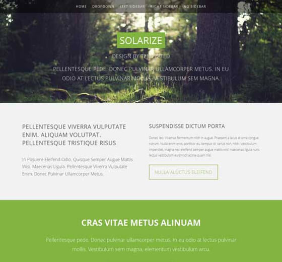 Solarize Responsive HTML5 Photography