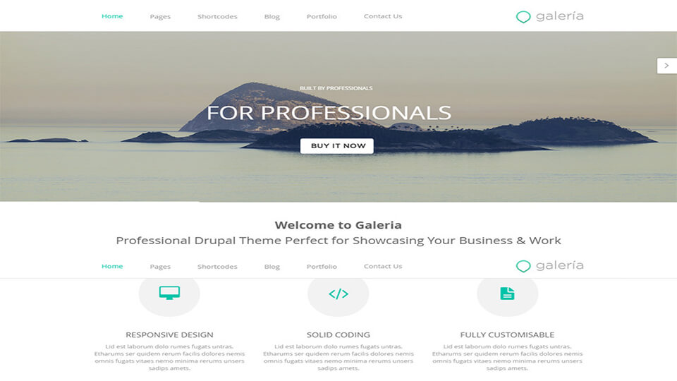 Theme Development Responsive Drupal