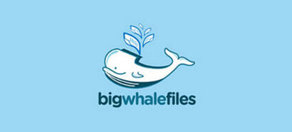 Whale Logo Design for Graphic