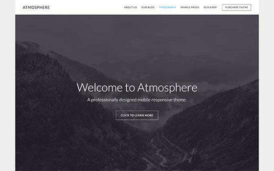 atmosphere Small Business WordPress