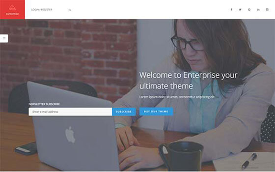 enterprise Business WordPress Theme
