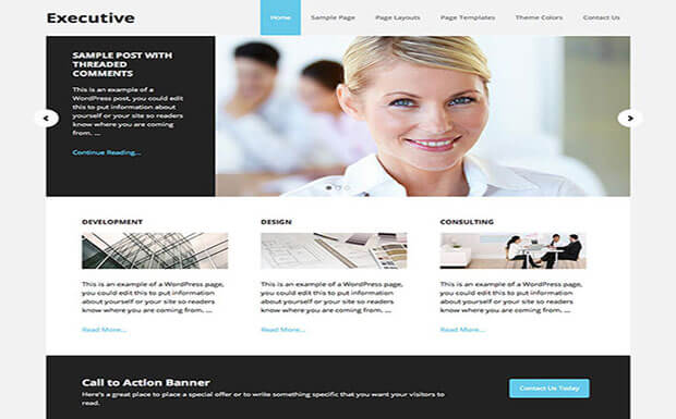 executive Business WordPress
