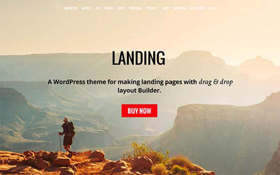 landing Business WordPress Theme