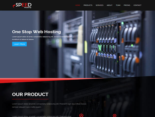 speed Web Hosting