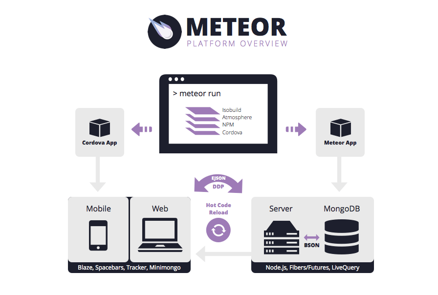Meteor Developers: Why Need Them ?