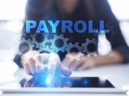 payroll options