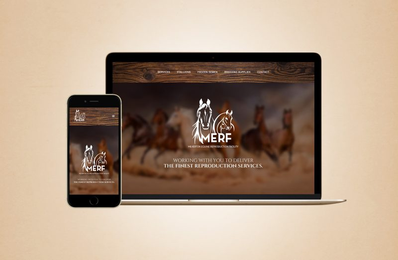 MERF Website Design