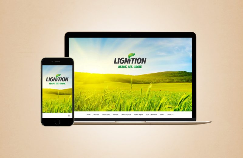 Lignition Website Design