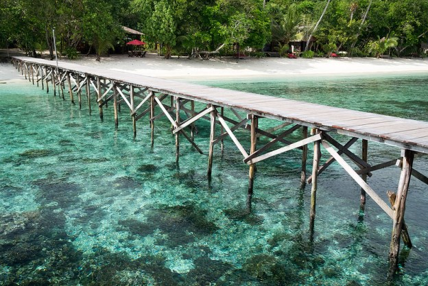 Raja Ampat - Dive Resort or Homestay?