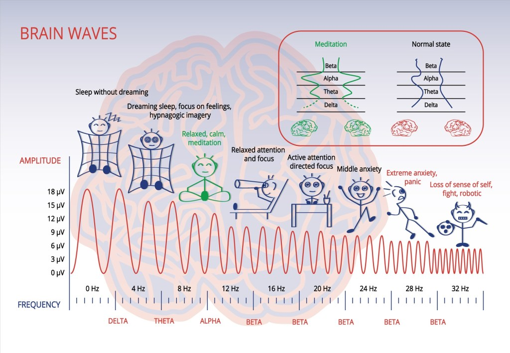 Brain Frequency Waves In Meditation