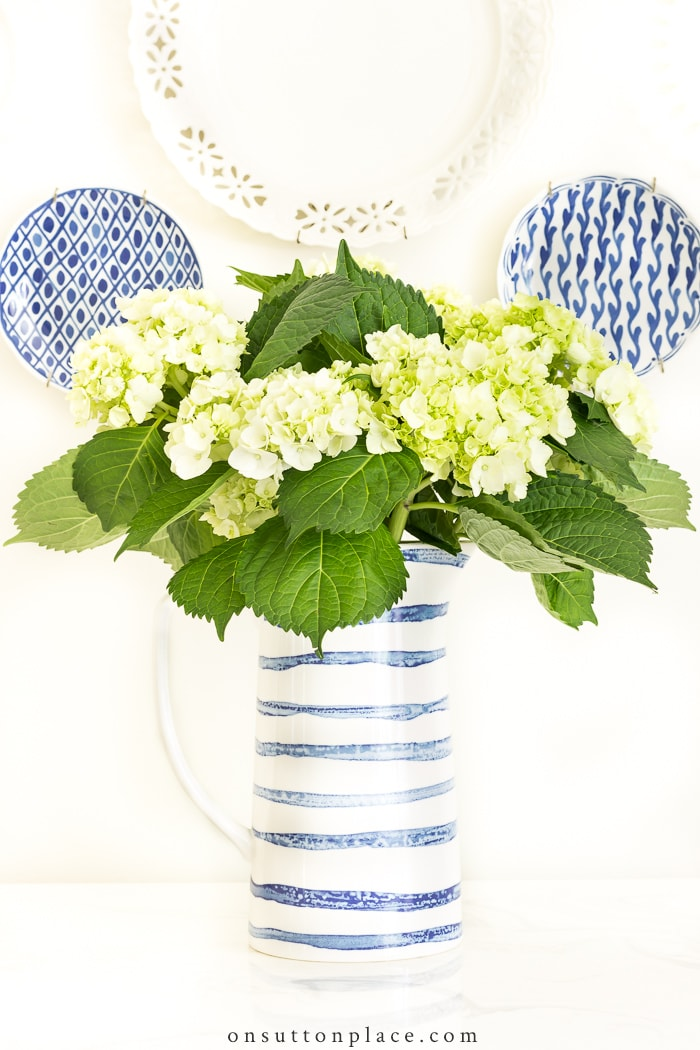 Long Lasting Cut Hydrangeas from On Sutton Place