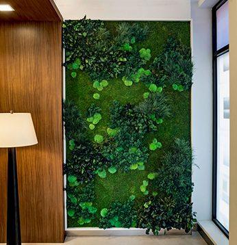 Garden on the Wall - Vertical Moss Install
