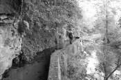 Sur les chemins