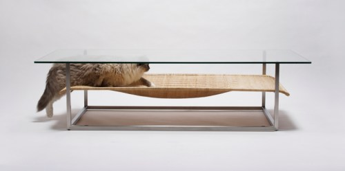 case.real.cat.hammock