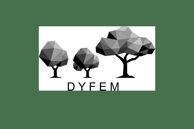 DYFEM