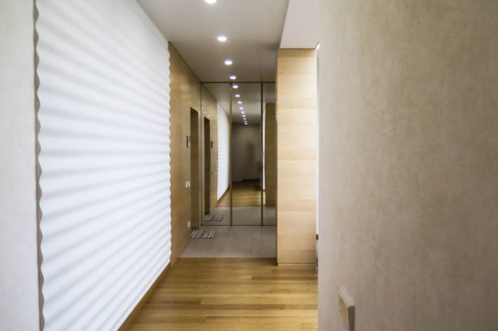 Modern design ideas of the hallway in a narrow corridor ...