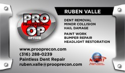 PRO-OP-PDR-BUSINESSCARDS-front-RV