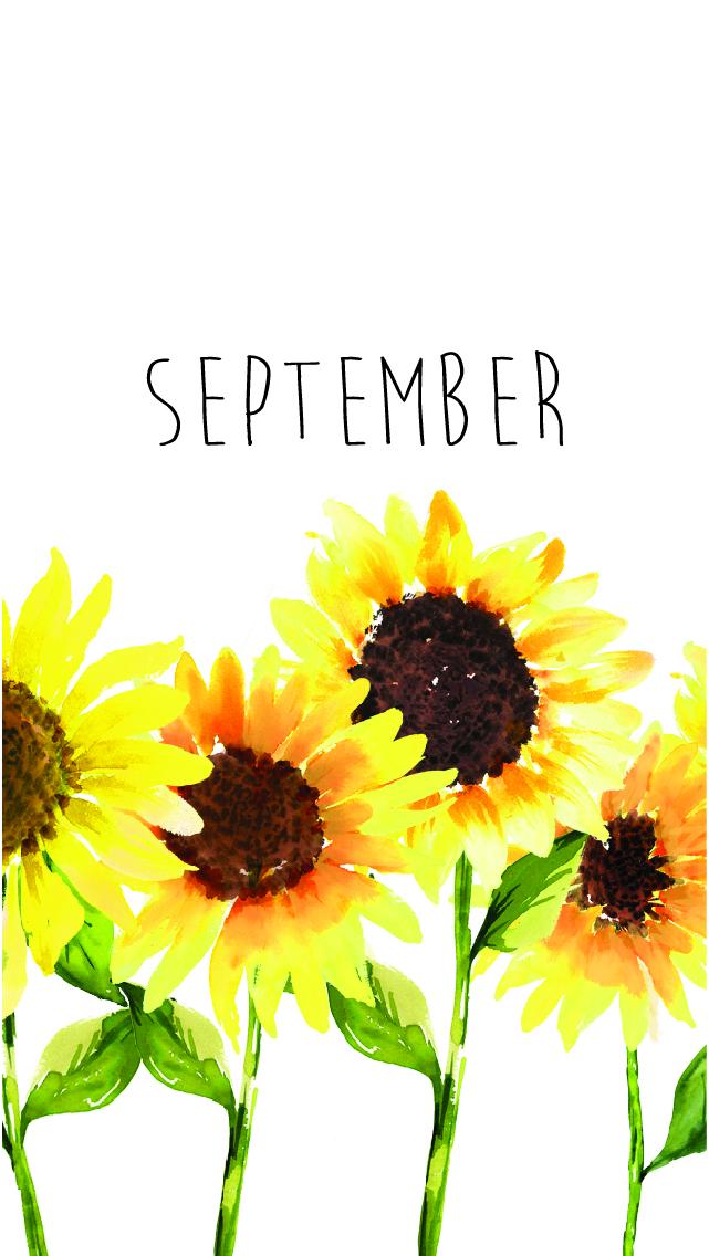 Fall Sunflowers Wallpaper Sunflowers Freebie September 2018 Tech Wallpaper Design