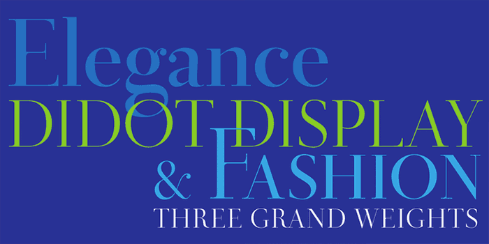 Didot Display by Canada Type, a classic didone font that looks great in fashion and magazine style blogs. One of the font types I recommend for feminine designs in this roundup of 9 feminine font trends for 2016.