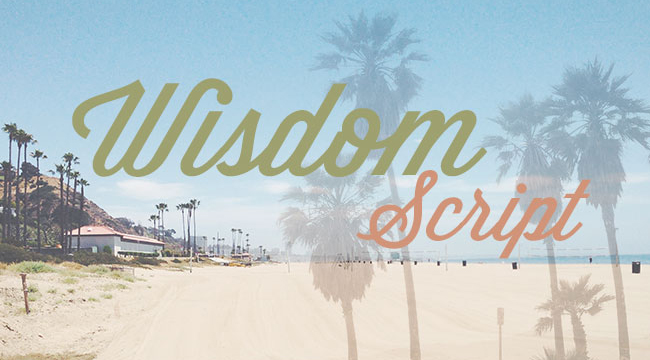 Wisdom Script, a free font is one of 20 beautiful fat brush scripts at DesignYourOwnBlog.com
