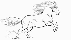 horse draw drawing line drawings easy beginners animal basic creative step cartoon tutorial cool tutorials should check bloq