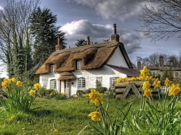 bucolic Hardyesque cottage