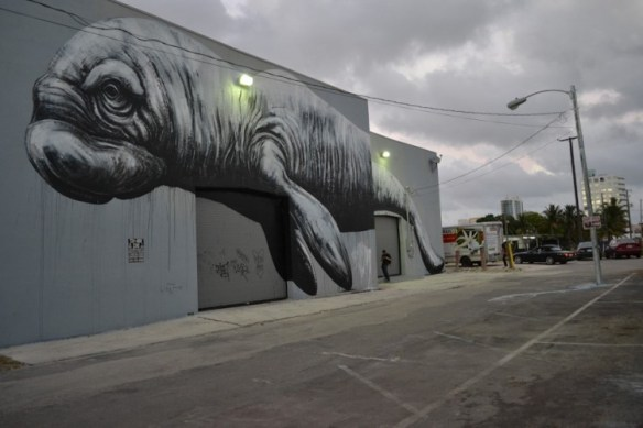 ROA Miami DSC 0122 1000 750x500 ROA in Australia + Chile + Miami