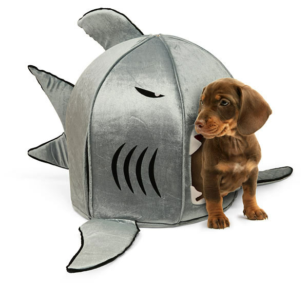 253 Super Fun Shark Bed for Your Pets