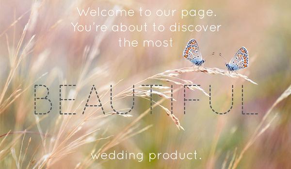 493d825c212482ad28f50d4db133d8d7 Winter Wedding With Rice Butterflies