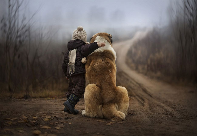 666 Mothers Intimate Photographs Capture Her Sons Special Bond with Animals
