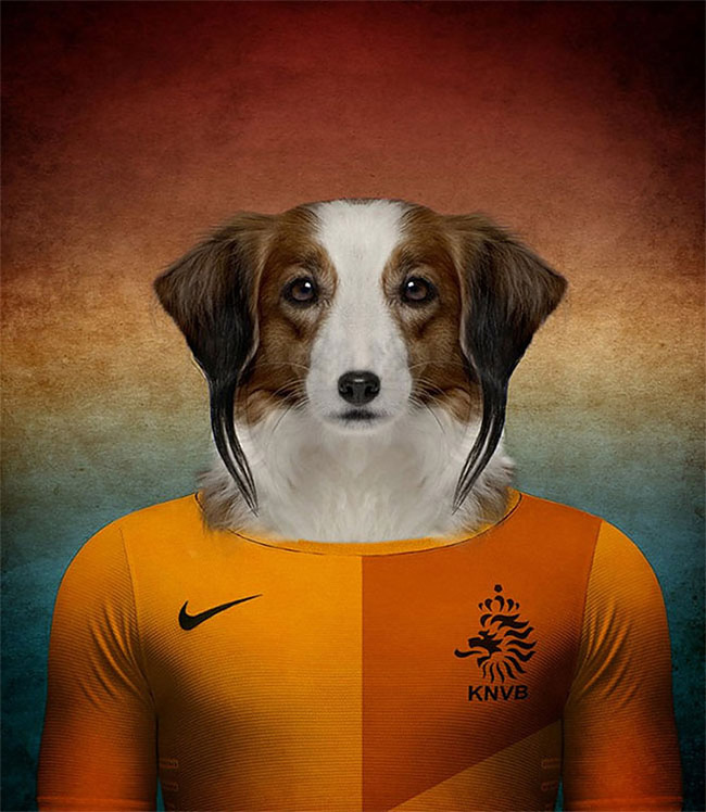 5111 Dogs Of Word Cup Brazil 2014