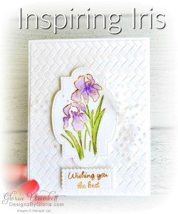 """Inspiring iris stamp set, coasting weave 3d embossing folder, gorgeous grape classic ink, pear pizzazz classic ink, pleased as punch designer series paper, granny apple green cardstock, basic black cardstock, gorgeous grape cardstock, rococo rose light and dark stampin' blends, granny apple green dark and light stampin' blends, watercolor pencils, blender pen, petal pink cardstock, stitched so sweetly dies, rectangle stitched framelits, 5/8"""" whisper white flax ribbon, real red rhinestones, silicone craft mat, white embossing powder, versamark ink pad, heat tool, watercolor paper, crumb cake cardstock, tear & tape, 1"""" circle punch, simply scored, paper trimmer, Paper Snips, Take Your Pick Tool, Stampin' Sponges, White Chalk Marker, Stitched Rectangle Dies, sip & celebrate dies, Grid Paper, stampin sponge, perfectly plaid Stamp set, truck ride dies, shimmery crystal effects, braided linen ribbon, to every season stamp set, every season punch, gold foil paper, shaded spruce cardstock, cherry cobbler cardstock, wrapped in plaid 6 x 6 designer series paper, thick whisper cardstock, silicone craft mat, grid paper, polka dot tulle ribbon, come to gather designer series paper, splitcoaststampers, come painters, blender pens, clear wink of stella, stampin' trimmer, very vanilla cardstock, sponge daubers, dimensionals, paper snips, multipurpose liquid glue take your pick, SNAIL adhesive, stampin' up! Demonstrator, how to, diy handmade, homemade, rubber stamping, greeting card, crafts cardmaking to gathered ribbon combo pack, Tags & More Accessory kit, black stampin dimensionals, detailed trio punch, basic black cardstock, old olive classic ink, memento tuxedo black ink, black stazon ink, thick whisper white cardstock, whisper white cardstock, stamparatus, aqua painters, simply shammy shammie"""