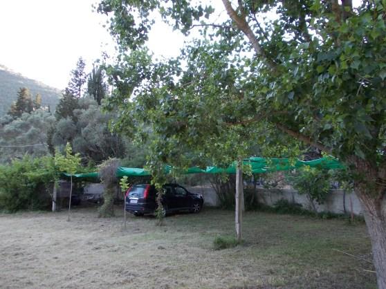 garden03