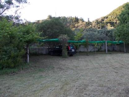 garden04