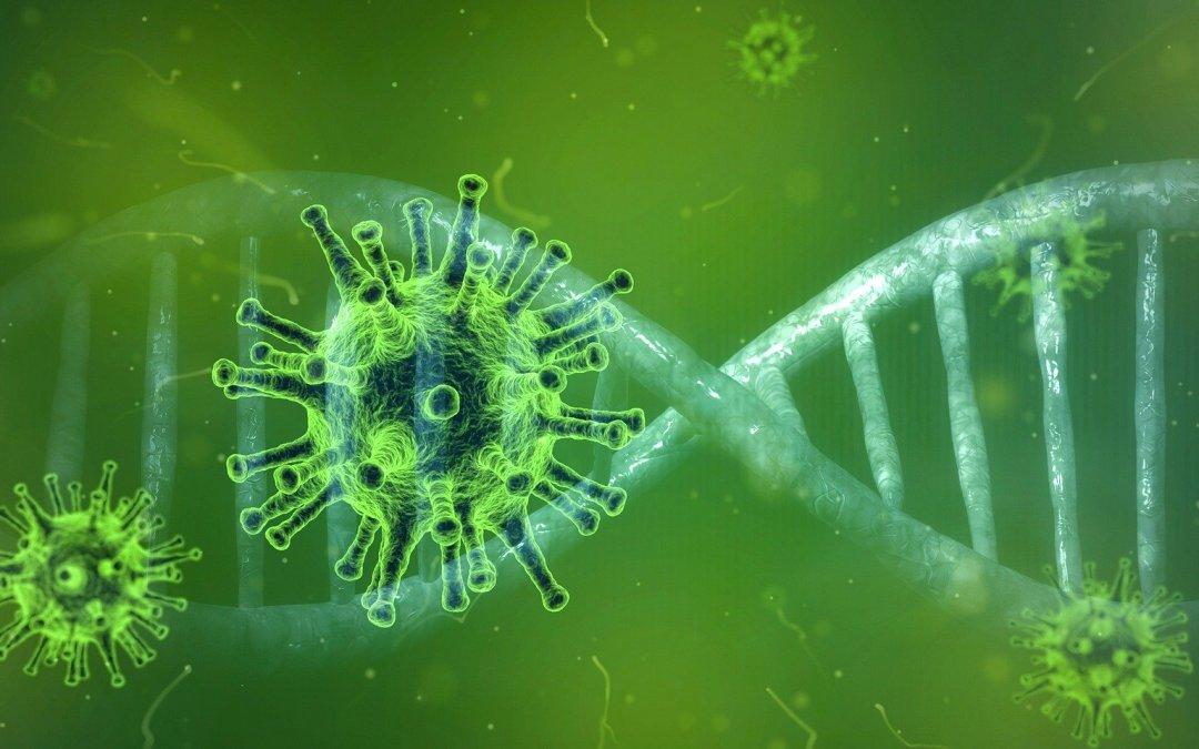 Empresa de desinfección en Barcelona -Virus