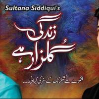 Zindagi Gulzar Hai ~ Episode 26 Finale Review