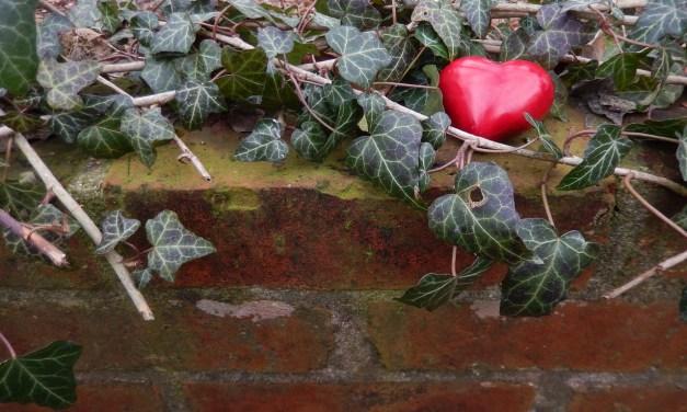 Comment trouver l'Amour en restant Zen