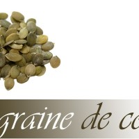 Alicament : La graine de courge
